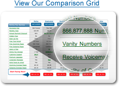 View our 800 numbers comparison grid